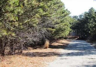 17 Deer Run Road